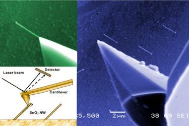 Mechanical probe: AFM tip targets nanostructures
