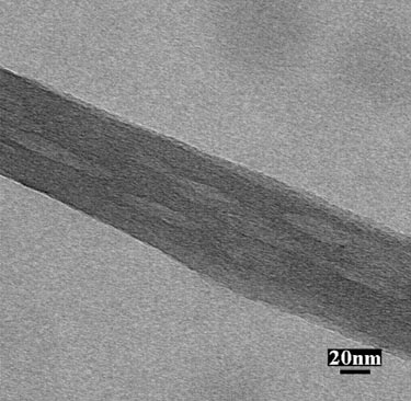 Porous carbon nanofibre