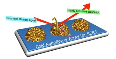 Nanoflower array configured for biosensing