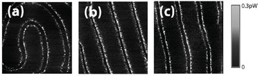 Dissipation detail: yttrium-iron garnet sample