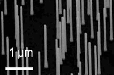 Test sample: InP nanowires