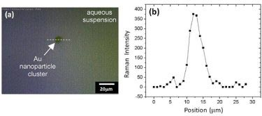 Gold nanoparticle cluster: optical image and spatial profile