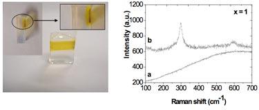 CdS precursor-doped silica matrix and Raman plot