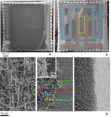 In pictures: lift-off process and nanowire morphology