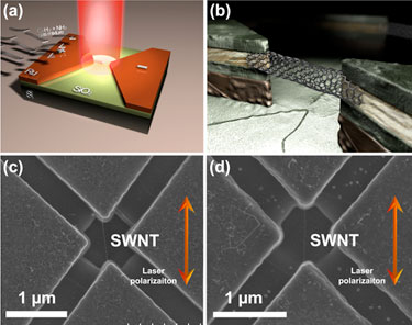 Carbon nanotube integrated bridge structure