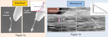 Under test: vertically oriented carbon nanofibres