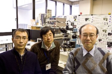 Counting graphene layers: researchers from NTT and University of Tokushima