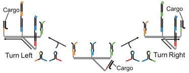 Programming a nanobot to move