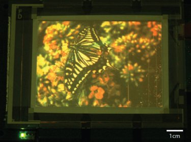 Large-area, full-colour quantum dot display