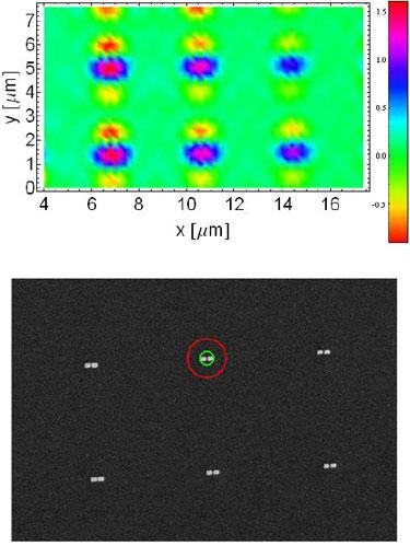 Array of gold nanoantennas