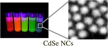 CdSe nanocrystals fluoresce