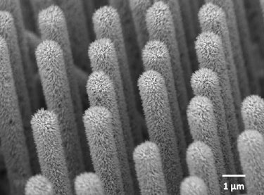 The nanowire arrays