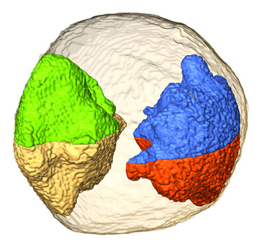 Nanogold in 3D vision