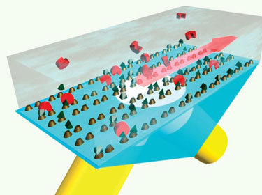 Schematic diagram of the plasmonic metamaterial being used to detect molecules