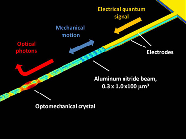 Electro-optomechanical transduction in the piezoelectric crystal