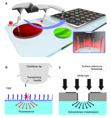 Single-molecule cut-and-paste into nanoapertures