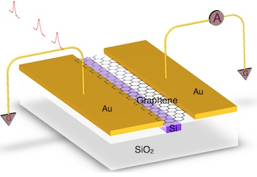 A waveguide-integrated graphene photodetector
