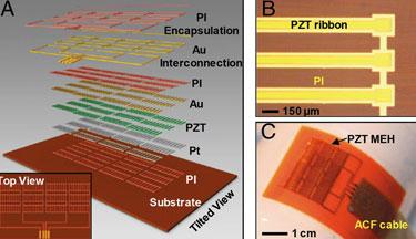 PZT-nanoribbon energy harvester