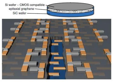Si-on-epitaxial graphene/SiC monolithic wafer integration