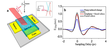 Optical pump THz probe spectroscopy of graphene