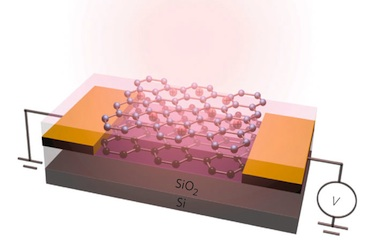 A schematic of the graphene photodetector