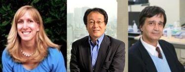Jennifer Dionne, Satoshi Kawata and Adarsh Sandhu.