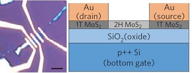 Phase-engineered transistor devices