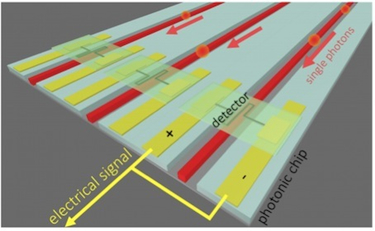 Superconducting detectors on arrayed waveguides