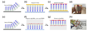 How to make flexible LEDs based on vertical nitride nanowire arrays