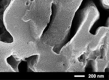 Porous semiconductor surface