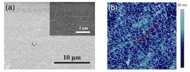 Wrinkled graphene