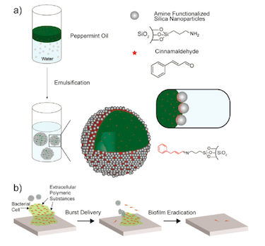 Making the nanocapsules