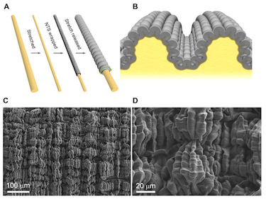 2D buckled sheath-core fibres