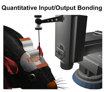 Set-up for conductive ink printing to connect mesh electronics
