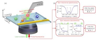 The scanning nanospin ensemble microscope