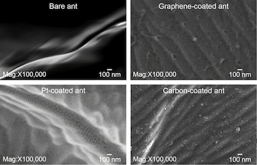 Graphene vs metal coating