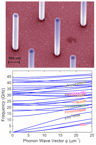 Free-standing GaAs nanowires and their acoustic phonon spectrum