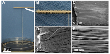 The self-assembled highly-ordered ultralong hydroxyapatite nanowires