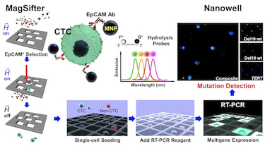 The integrated nanoplatform to detect CTCs