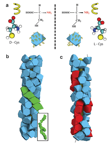 Simulated helical hierarchical assemblies of D- and L-nanoparticles