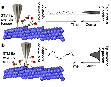 A schematic showing the principle behind the use of scanning noise microscopy to investigate catalytic dynamics