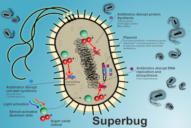 Superoxide-generating nanoparticles boost traditional antibiotics