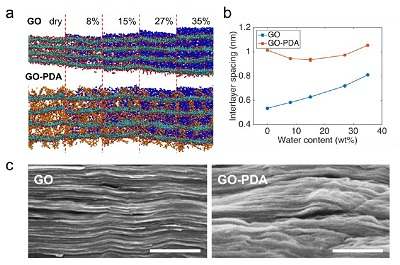 Water effects on interlayer spacing