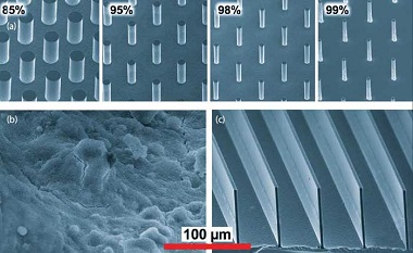 Images of the periodic microstructures. (Courtesy: CJ Kim)