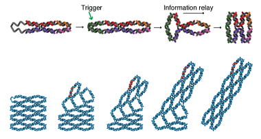 Schematic image showing DNA arrays changing shape in response to an external trigger.