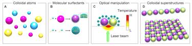 The opto-thermophoretic concept