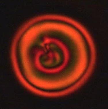 A rotating chiral supramolecular structure