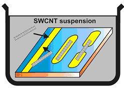 Nanotube self-assembly