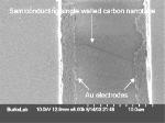 Nanotube transistors speed up: SEM image of semiconducting single-walled nanotube