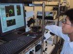 Nanoneedle gets into cells: Dr Obataya handles a nanoneedle